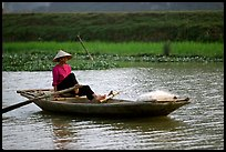 The local technique of paddling with feet, Ken Ga canal. Ninh Binh,  Vietnam
