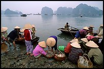 Fresh catch. Halong Bay, Vietnam (color)