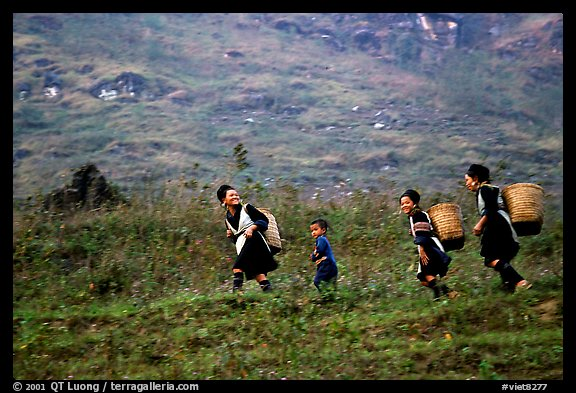 Hmong women back from the fields. The back basket is typically used by mountain tribes. Sapa, Vietnam (color)
