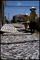 Women carrying a panel of fish being dried. Vung Tau, Vietnam (color)