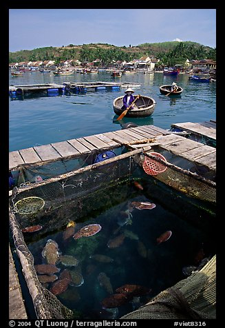 Fish cage in a small village in the Nha Trang bay. Vietnam (color)