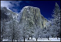 El Capitan, Yosemite National Park.