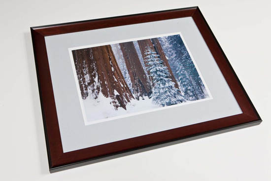 Framing options and prices