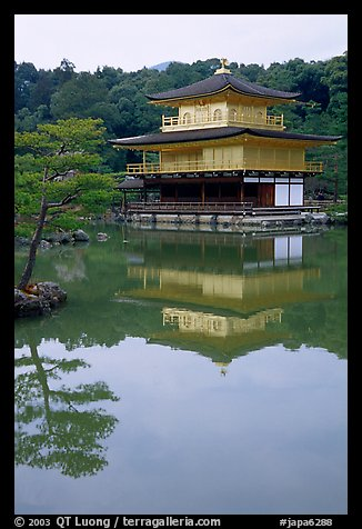 Golden pavilion, Kinkaku-ji Temple. Kyoto, Japan (color)