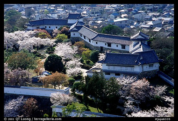 Castle grounds and walls with cherry trees in bloom. Himeji, Japan (color)