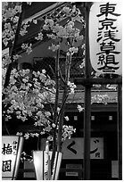 Lanterns and cherry blossoms on Nakamise-dori, Asakusa. Tokyo, Japan ( black and white)