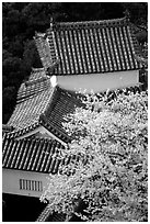 Rooftops and cherry trees seen from the castle donjon. Himeji, Japan (black and white)