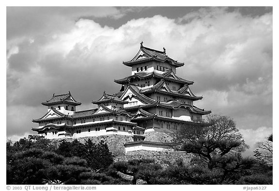Black and white picture photo classic lines of the castle himeji japan