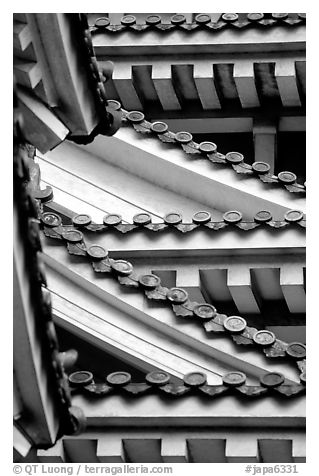 Architectural detail of the castle. Himeji, Japan (black and white)