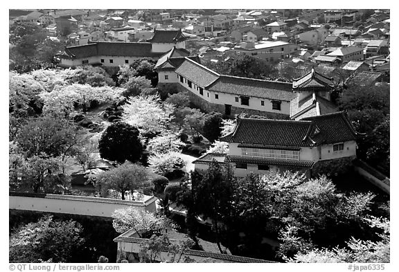 Castle grounds and walls with cherry trees in bloom. Himeji, Japan (black and white)
