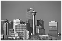 Skyline and tower, late afternoon. Calgary, Alberta, Canada ( black and white)