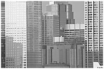 High-rise buildings. Calgary, Alberta, Canada ( black and white)