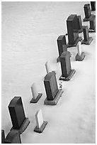 Tombstones in snow. Calgary, Alberta, Canada (black and white)