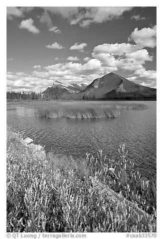 Mt Rundle and second Vermillion lake, afternoon. Banff National Park, Canadian Rockies, Alberta, Canada (black and white)