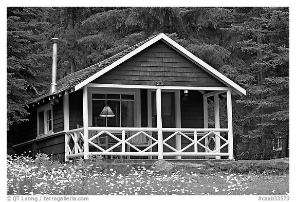 Cabin in forest with interior lights. Banff National Park, Canadian Rockies, Alberta, Canada (black and white)