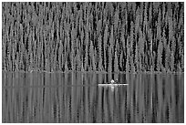 Rower on Lake Louise with forest reflection, early morning. Banff National Park, Canadian Rockies, Alberta, Canada ( black and white)