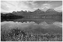 Herbert Lake and the Bow range, morning. Banff National Park, Canadian Rockies, Alberta, Canada (black and white)