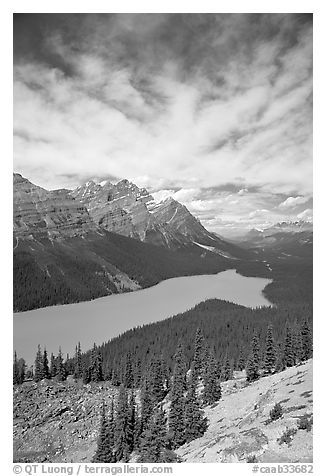 Peyto Lake, turquoise-colored by glacial flour, mid-day. Banff National Park, Canadian Rockies, Alberta, Canada (black and white)