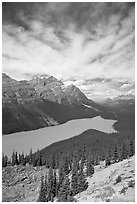 Peyto Lake, turquoise-colored by glacial flour, mid-day. Banff National Park, Canadian Rockies, Alberta, Canada ( black and white)
