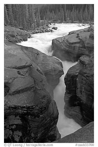 Entrance of slot, Mistaya Canyon. Banff National Park, Canadian Rockies, Alberta, Canada (black and white)
