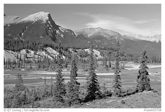 Saskatchevan River. Banff National Park, Canadian Rockies, Alberta, Canada (black and white)