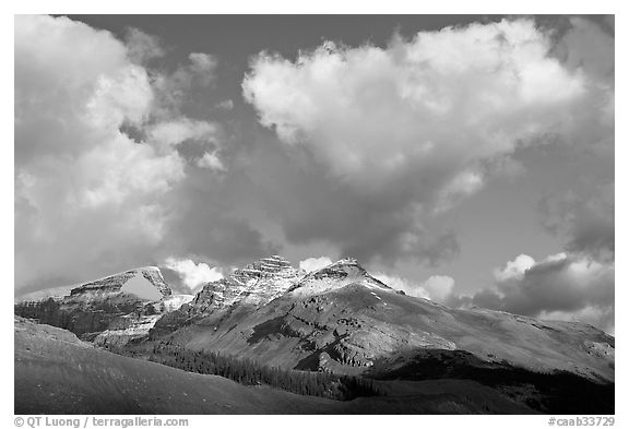 Peak and cloud near the Columbia Icefield,  early morning. Jasper National Park, Canadian Rockies, Alberta, Canada (black and white)