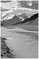 Wide Sunwapta River and Mt Athabasca, morning. Jasper National Park, Canadian Rockies, Alberta, Canada ( black and white)