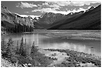 Refecting pool near Beauty Creek, afternoon. Jasper National Park, Canadian Rockies, Alberta, Canada (black and white)