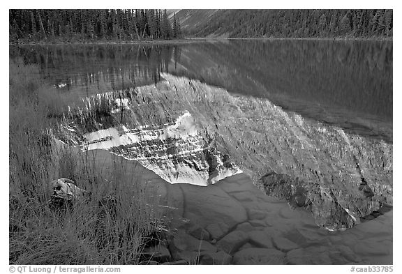 Reflections in Cavell Lake, early morning. Jasper National Park, Canadian Rockies, Alberta, Canada (black and white)