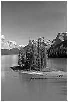 Evergreens on Spirit Island, Maligne Lake, afternoon. Jasper National Park, Canadian Rockies, Alberta, Canada ( black and white)