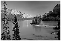 Tiny island with evergreens on  Maligne Lake, afternoon. Jasper National Park, Canadian Rockies, Alberta, Canada (black and white)
