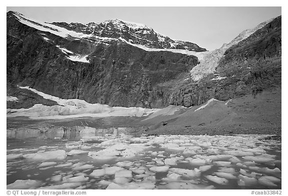 Cavell Pond at the base of Mt Edith Cavell, sunrise. Jasper National Park, Canadian Rockies, Alberta, Canada (black and white)