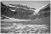 Glacial Pond filled with icebergs below Mt Edith Cavell, sunrise. Jasper National Park, Canadian Rockies, Alberta, Canada (black and white)