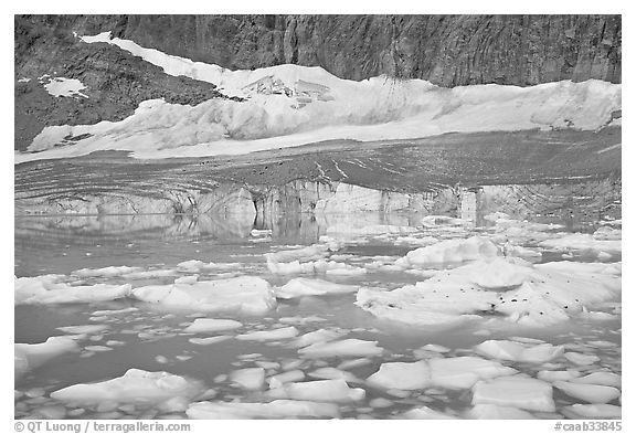 Icebergs in glacial lake and Cavell Glacier. Jasper National Park, Canadian Rockies, Alberta, Canada (black and white)