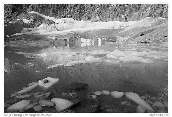 Icebergs, reflections, and Cavell Glacier. Jasper National Park, Canadian Rockies, Alberta, Canada (black and white)