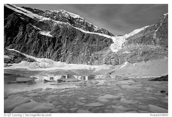 Icebergs and Cavell Pond at the base of Mt Edith Cavell, early morning. Jasper National Park, Canadian Rockies, Alberta, Canada (black and white)