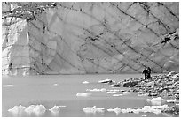 Hikers on the shore of Cavell Pond with high glacier wall behind. Jasper National Park, Canadian Rockies, Alberta, Canada ( black and white)
