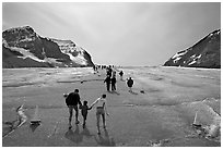 Tourists on Athabasca Glacier, Columbia Icefield. Jasper National Park, Canadian Rockies, Alberta, Canada ( black and white)
