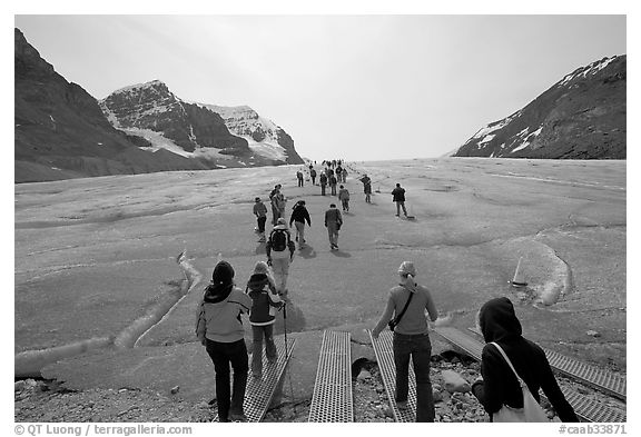 Tourists walking onto  Athabasca Glacier. Jasper National Park, Canadian Rockies, Alberta, Canada (black and white)