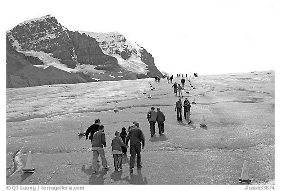 Tourists and families on Athabasca Glacier. Jasper National Park, Canadian Rockies, Alberta, Canada (black and white)