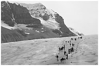 People amongst glacier and peaks, Columbia Icefield. Jasper National Park, Canadian Rockies, Alberta, Canada (black and white)