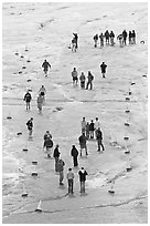 People in delimited area, Athabasca Glacier. Jasper National Park, Canadian Rockies, Alberta, Canada ( black and white)