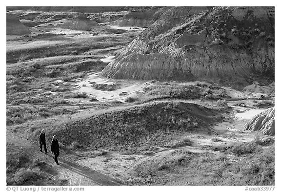 Hikers amongst badlands, morning, Dinosaur Provincial Park. Alberta, Canada