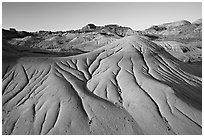 Eroded badlands, morning, Dinosaur Provincial Park. Alberta, Canada (black and white)