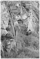 Cliff walls, Head-Smashed-In Buffalo Jump. Alberta, Canada (black and white)