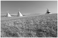 Teepees and tall grass prairie, Head-Smashed-In Buffalo Jump. Alberta, Canada (black and white)