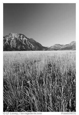 Grass prairie and front range Rocky Mountain peaks. Waterton Lakes National Park, Alberta, Canada (black and white)