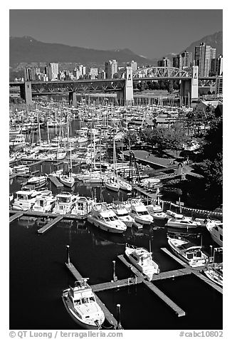 Small boat harbor on False Creek. Vancouver, British Columbia, Canada (black and white)