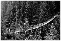 Capilano suspension bridge with tourists. Vancouver, British Columbia, Canada ( black and white)