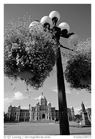 Baskets of flowers suspended from lamp post with parliament in the background. Victoria, British Columbia, Canada (black and white)
